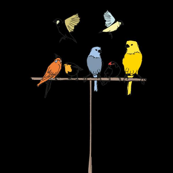 vogels_home