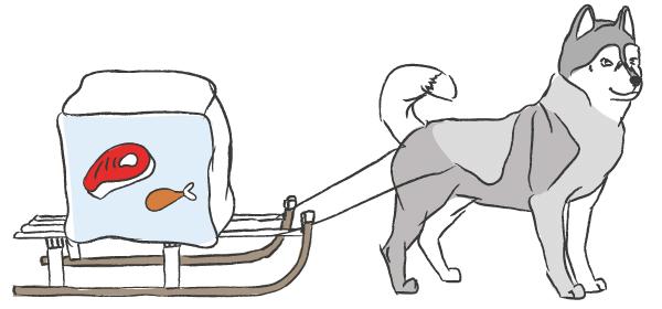 diepvries-honden